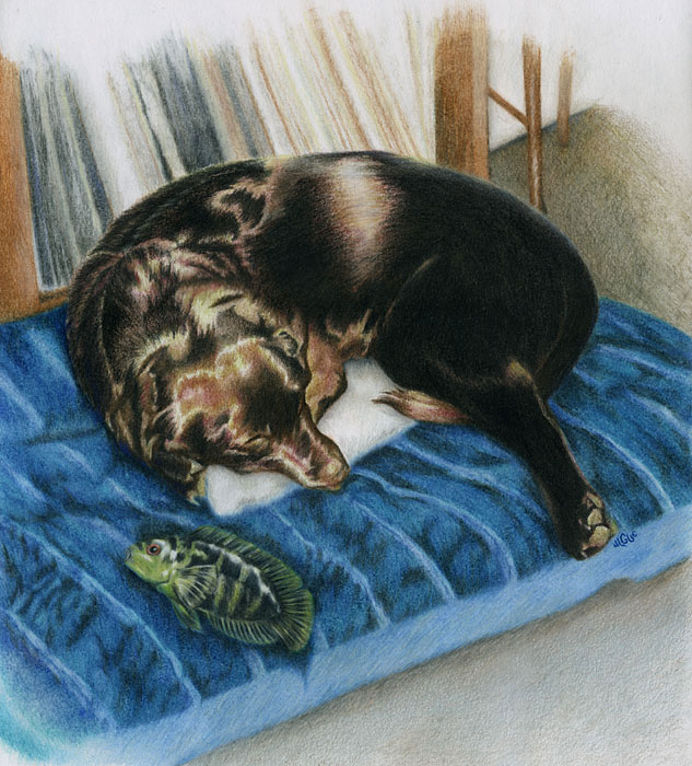 Fantasy art / comic illustration 'Best of Friends': A dog and fish sleeping on a mat