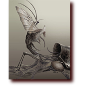Featured Work: Kickback: A mutated version of Insecticon Kickback, the grasshopper