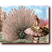 "Colored Pencil Art entitled ""Turning Tail"": A golden-gowned princess observed by a peacock's hundred eyes"